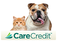 Care Credit Apply here